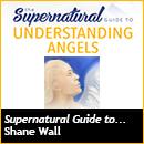 Supernatural Understanding