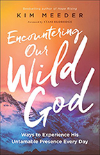 Encountering Our Wild God (Book & 3-CD Set) by Kim Meeder; Code: 9621
