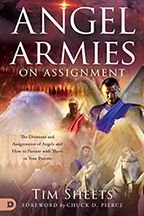 Your Angels on Assignment & Chariots of Fire (Book & 3-CD/Audio Series) by Tim Sheets; Code: 9722
